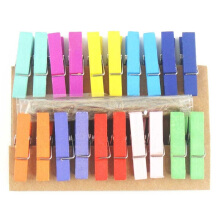 Radysa Wooden Clip Rainbow isi 20pcs Multicolor Others