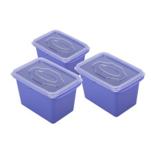 VICTORYHOME Food Box 1000ml Set of 3 - Violet Blue
