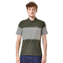 HAMMER Polo Stripe [C1PS431N1] - Green
