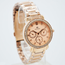 Hegner Stainless Steel Ladies 5023-1LS-360D31RG Chronograph Rosegold Gold