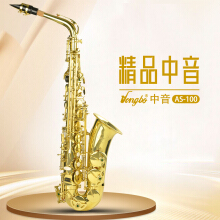 HONGBO Alto Saxophone AS-100 Golden