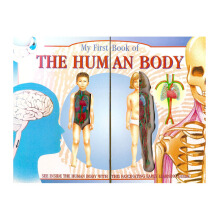 My First Book Of Human Body (Blue)Import Book -  - 9781858303772