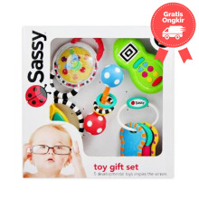 Sassy Toy Gift Set Color Full Age 6M+