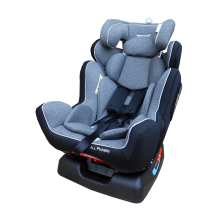 BABYDOES Car Seat All Phase 891 - Grey