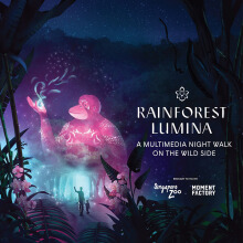 Tiket Masuk Rainforest Lumina at Singapore Zoo - Adult