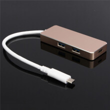 Blitzwolf Type C to 2-Port USB 3.0 Data Transfer & Charging Hub For Macbook Champagne  Silver