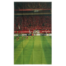 JDWonderfulHouse World Cup photography Cloth Backdrop Photo Lighting Studio Background 1.5x2.1m/5x7ft
