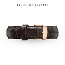 Daniel Wellington Classic York RG 20