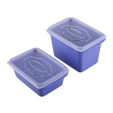 VICTORYHOME Food Box 1000ml & 500ml Set of 2 - Blue Violet