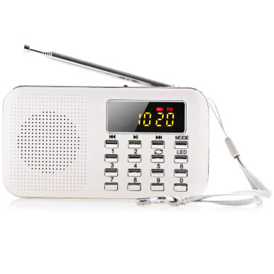Mini Multifunctional Digital LCD MP3 Radio Speaker Player