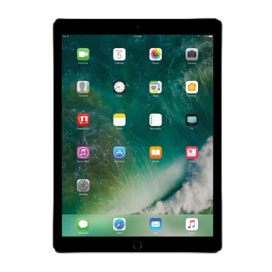 APPLE NEW iPad Pro 10.5 2017 Model WiFi 256GB - Gray