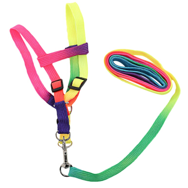 Colorful Adjustable Polyester Traction Rope for Pet Dog Cat