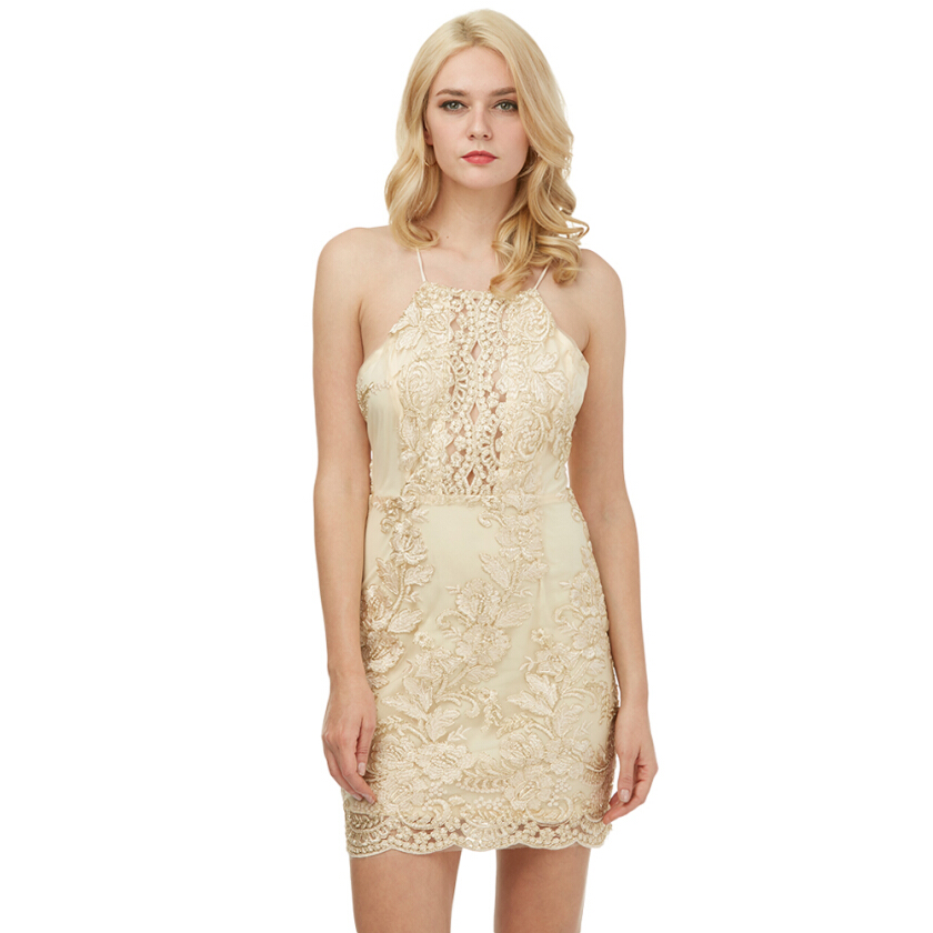 Zaful Woman Cami Dress Spring And Summer Floral Embroidery Sexy Style Sleeveless And Backless Design Lace Mini Dress